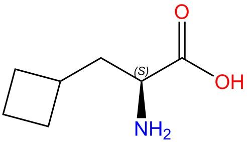 L-Cyclobutylalanine