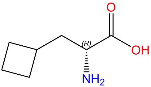 D-Cyclobutylalanine